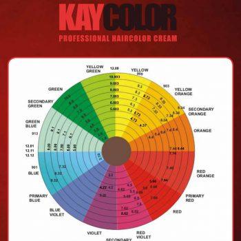 web-KayColor_NEWTON'S WHEEL_page-0001