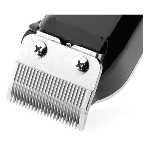 barbe-barburys-silvio